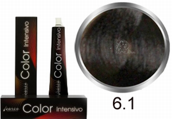 Carin Color Intensivo No. 6.1 dark blond ash