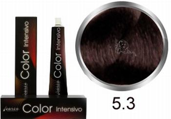 Carin  Color Intensivo nr 5,3 lichtbruin goud