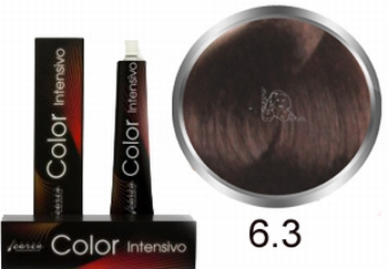 Carin  Color Intensivo nr 6,3 donkerblond goud