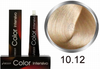 Carin Color Intensivo No10.12 extra light-blended violet ash
