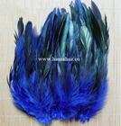 Feather Fazan, Farbe: Blau