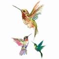 Bird Body tattoo