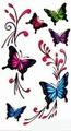 Butterfly Body tattoo