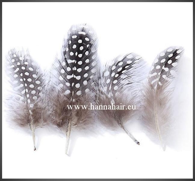 Feathers (veertjes)
